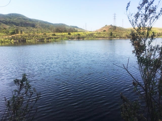 barb lake (2)