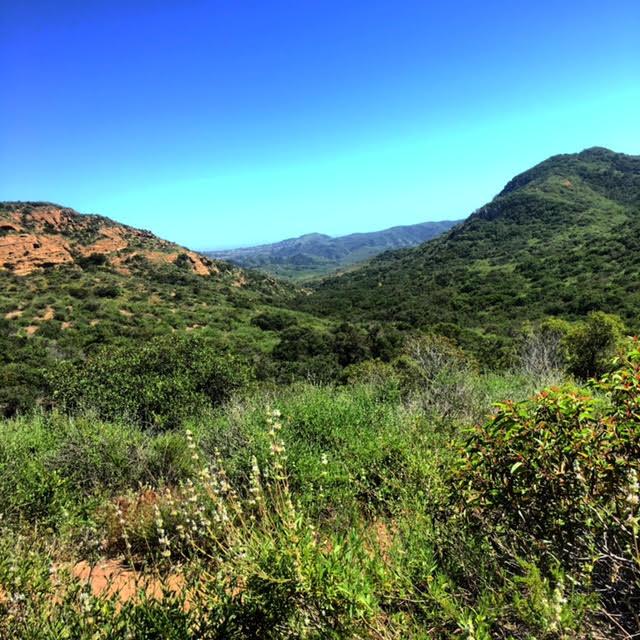 hike thyme eric